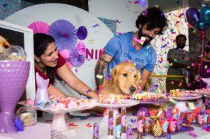 O aniversário da pet influencer @ninagoldenbh